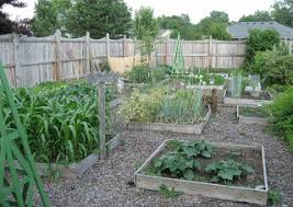 how big is your vegetable garden