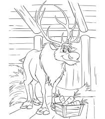 26 coloring pictures images coloring books