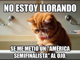 Memes De Pumas Vs America - memes de pumas imagenes chistosas