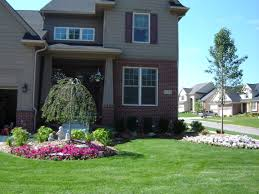 pear home decor images about landscaping on pinterest front yard weeping cherry