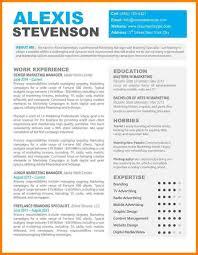 Free Resume Template Mac by 14 Word Resume Template Mac Based Resume