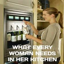 Woman Kitchen Meme - what every woman needs in the kitchen
