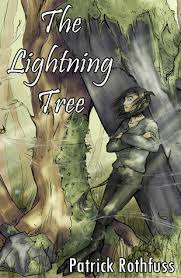 bookdragon the united kingdom s review of the lightning tree
