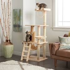 go pet club 62 inch cat tree free shipping today overstock
