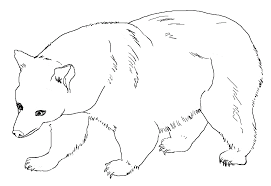 brown bear coloring pages printable virtren com