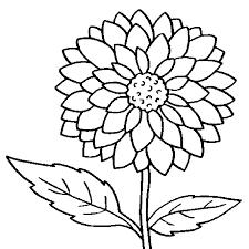 impressive flowers coloring page colorings design ideas hawaiian