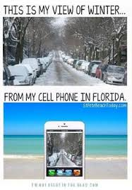Florida Winter Meme - 23 things everyone who lives in florida will understand weather
