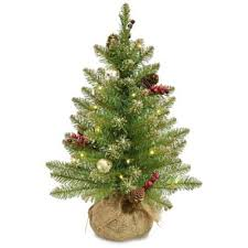 buy led lighted trees from bed bath beyond