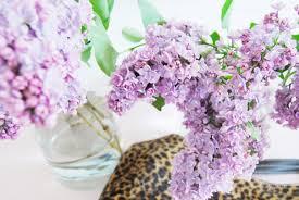 List Of Flowers by Lilacs Leopard Print U0026 A List Of Loves Brick Dust U0026 Glitter