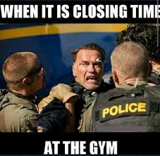 Gym Buddies Meme - arnold meme closing gym memes comics pinterest arnold