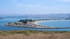 Tomales Bay Map 15 Beach Camping Spots At San Francisco Bay Area Beaches U0026 Campgrounds
