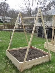 building the boxes and supports the garden experiment