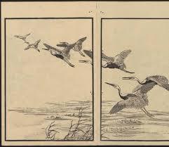 925 best watercolor birds images on pinterest bird art