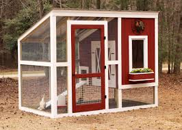 Chicken Coop Floor Options by How To Build A Backyard Chicken Coop Hgtv