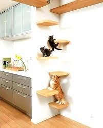 cat wall furniture cat climbing wall cat wall perch an error occurred cat wall perch