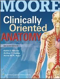 Human Anatomy Textbook Pdf Clinical Anatomy By Systems Anatomy Pinterest Anatomy And By