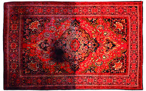 How Do You Clean An Area Rug How Much Will It Cost To Clean My Area Or Oriental Rug
