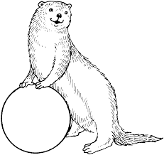 sea otter clipart coloring page pencil and in color sea otter