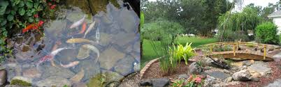 charming pictures of rock gardens photos best inspiration home