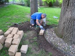 Tree Ideas For Backyard Pictures Landscaping Tree Ideas Best Image Libraries