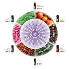 Doterra February 2017 Product Of The Month Essential Oils 30 30 Weekly Teleclass Santadotfe