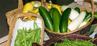 control garden pests for a better harvest grow vegetables in