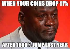Meme Coins - crypto meme crying when your coins drop after 1600 jump last year
