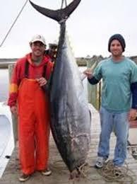 great trip review of oak island fishing charters oak island nc
