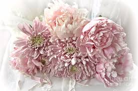 peonies bouquet cottage chic carnations peonies bouquet pink