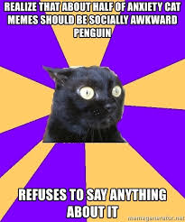Meme Socially Awkward Penguin - realize that about half of anxiety cat memes should be socially