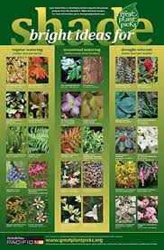 great plant picks unbeatable plants for the maritime northwest garden