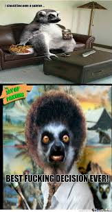 Lemur Meme - lemur memes best collection of funny lemur pictures