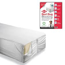 Mattress Cover Bed Bugs Orkin Bed Bug Heat Treatment Cost Home Beds Decoration