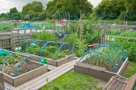 fencing ideas for vegetable gardens garden design ideas