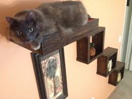 Instructables Cat Tree by Diy Cat Trees Cats Ladder And Cat