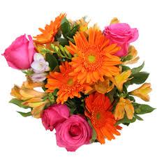 floral arrangement of color fresh floral arrangement