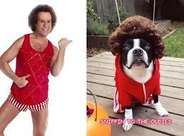 Richard Simmons Halloween Costumes Dear Ellen U0027s Physical Project Dog