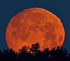 strawberry moon strawberry moon