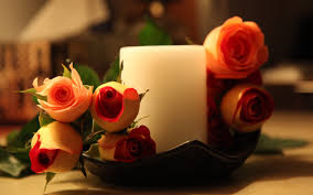 flower rose candles photography candle love nature romantic