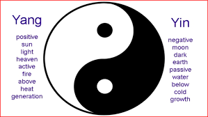 yin and yang in chiropractic dr chen see