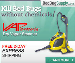 What Temperature Do Bed Bugs Die How To Kill Bed Bugs Using Steam Faqs
