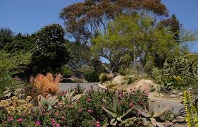 Quail Botanical Gardens Free Tuesday San Diego Botanic Garden Day Trip A Paradise In Encinitas