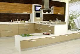 aesthetic modular kitchen furniture in whs kirti nagar new delhi