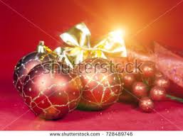New Year S Fruit Decoration by Red Tropical Berries Fruit Christmas Palm Stock Photo 94694329