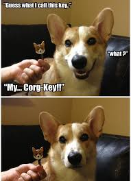 Pun Dog Meme - 15 terrible wonderful dog puns to torture your friends with playbuzz
