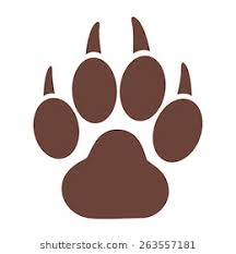 tiger paw print images stock photos vectors