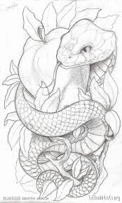 11 best zine images on designs tattoos