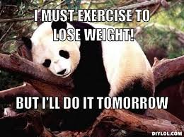 Exercise Meme - 15 exercise memes you can totally relate to sayingimages com