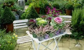 alan titchmarsh tips on growing ornamental vegetables garden