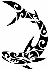 tattoo tattoodesigns shark tribal polynesian polynesian